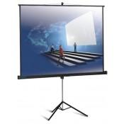 Экран для проектора (4)